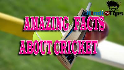 10 amazing facts about cricket, 10 most amazing facts about cricket, 100 amazing facts about cricket, 2 facts about cricket, 25 amazing facts about cricket, 3 facts about crickets, 3 interesting facts about crickets, 5 amazing facts about cricket, 5 facts about cricket world cup, 5 fascinating facts about cricket, 5 fun facts about crickets, 5 interesting facts about cricket, 5 weird facts about cricket, 6 facts about cricket, 7 facts about cricket, 8 interesting facts about cricket, amazing facts about 2015 cricket world cup, amazing facts about cricket, amazing facts about cricket game, amazing facts about cricket history, amazing facts about cricket in hindi, amazing facts about cricket in hindi language, amazing facts about cricket in india, amazing facts about cricket insect, amazing facts about cricket players, amazing facts about cricket world cup, amazing facts about cricket world cup 2011, amazing facts about cricket world cup 2015,, amazing facts about crickets, amazing facts about indian cricket, amazing facts about indian cricket team, amazing facts about ipl cricket, amazing facts about pakistan cricket team, amazing facts about test cricket, amazing facts about the cricket, amazing facts about world cricket, amazing facts of cricket, amazing facts of cricket in hindi, amazing facts of cricket world cup, amazing facts of cricket world cup 2015, facts about cricket 2015, facts about cricket ball, facts about cricket bat, facts about cricket betting, facts about cricket bugs, facts about cricket cages, facts about cricket eggs, facts about cricket fighting, facts about cricket flour, facts about cricket frogs, facts about cricket history, facts about cricket match, facts about cricket nz, facts about cricket pitch, facts about cricket quora, facts about cricket records, facts about cricket sport, facts about cricket stadiums, facts about cricket stumps, facts about pakistan funny cricket, fun facts about cricket frogs, fun facts about cricket game, fun fa