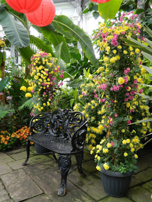 Allan Gardens Conservatory 2015 Fall Chrysanthemum Show bench display by garden muses-not another Toronto gardening blog