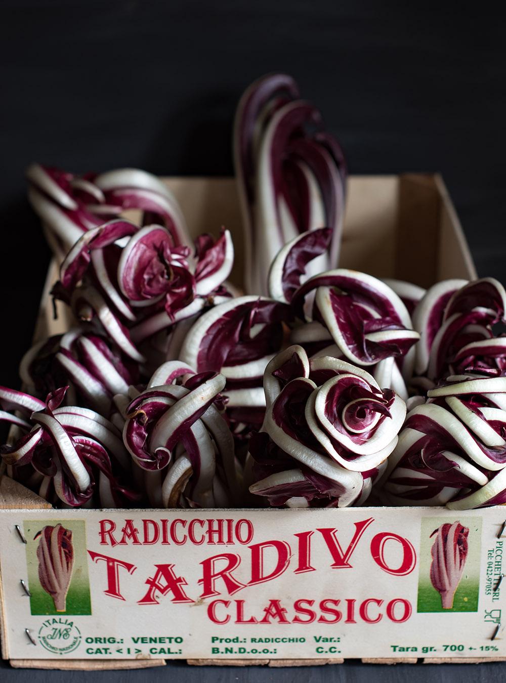 Radicchio Rosso di Treviso Tardivo
