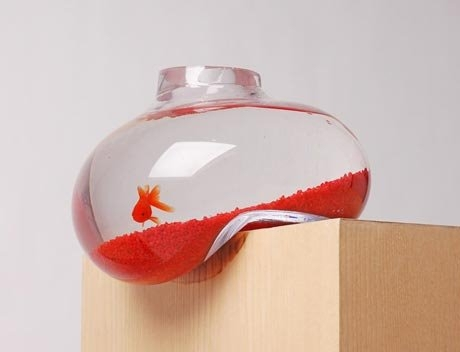 Cool Things On Sale: Cushion the fish tank