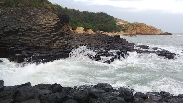 Discover the wild nature in Phu Yen 1