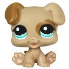Littlest Pet Shop Pet Pairs Puppy (#1482) Pet