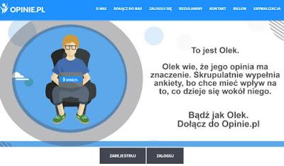 Panel Opinie.pl, Zarabianie przez Internet, płatne ankiety