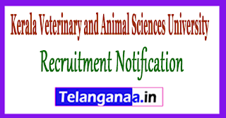 Kerala Veterinary and Animal Sciences University Recruitment Notification 2017