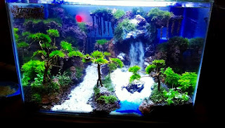 Model Tema Aquascape Terbaik