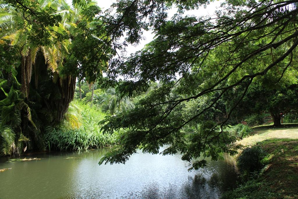 Doug 39 s photo site kauai national tropical botanical garden - National tropical botanical garden kauai ...