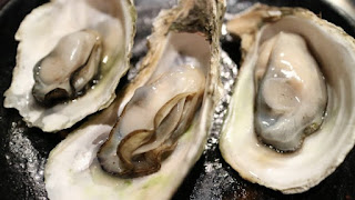 raw oysters, oysters
