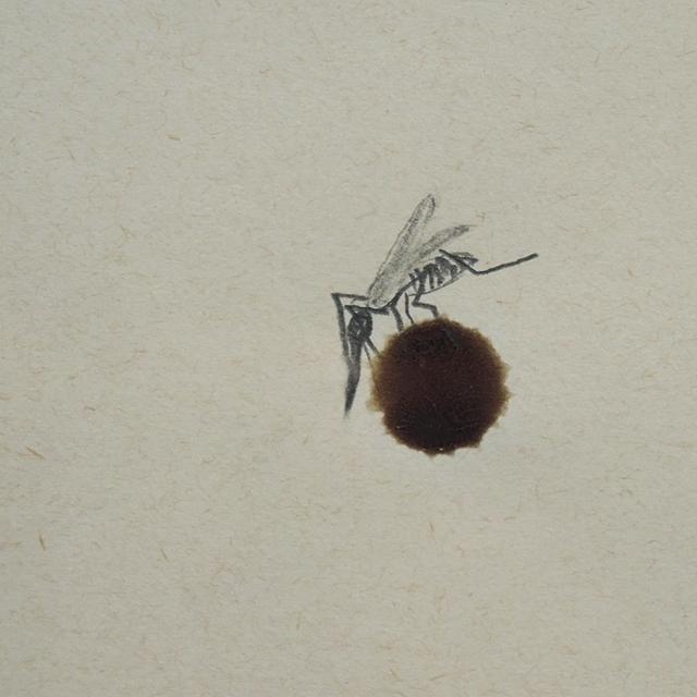 een mug/vampier op mijn bloed - Jan fabre