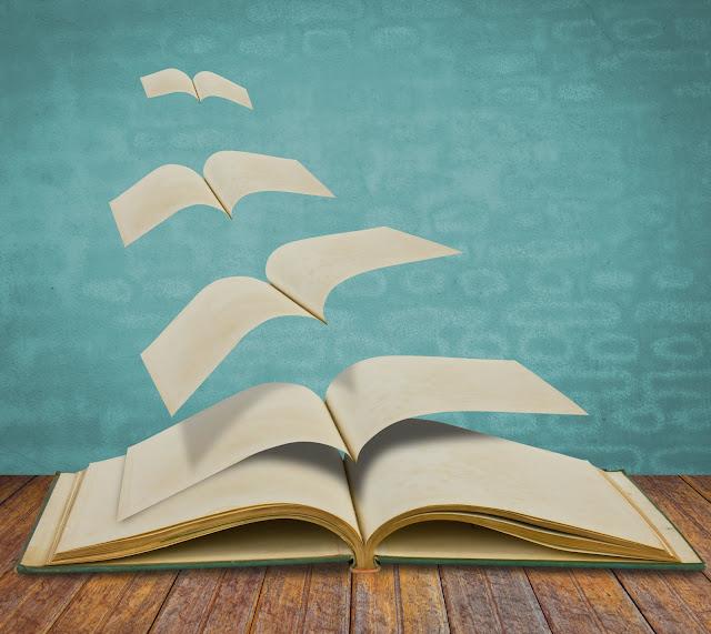 Imagen de la noticia: Ganadoras y ganadores del Certamen Literario 2019  [Actualizado]