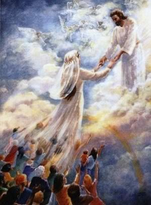Bride of Yeshua Gathered & led gently...