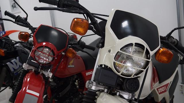 LRG DSC03412 - Visita ao Remaza Collection