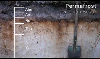 Permafrost atau Tanah Beku dan struktur lapisannya