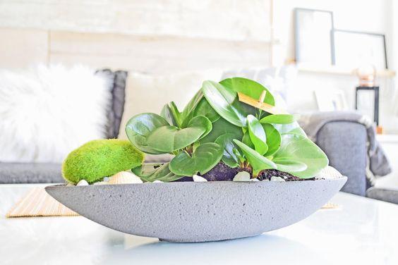 planter diy