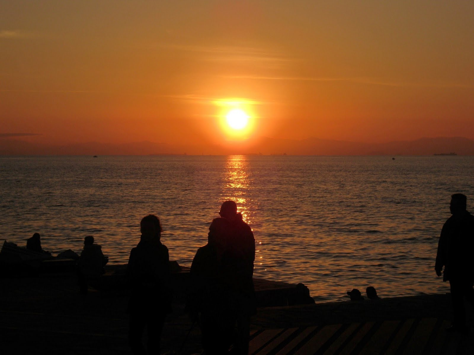 CUT and DRY : How do You Feel When Watching the Sunset