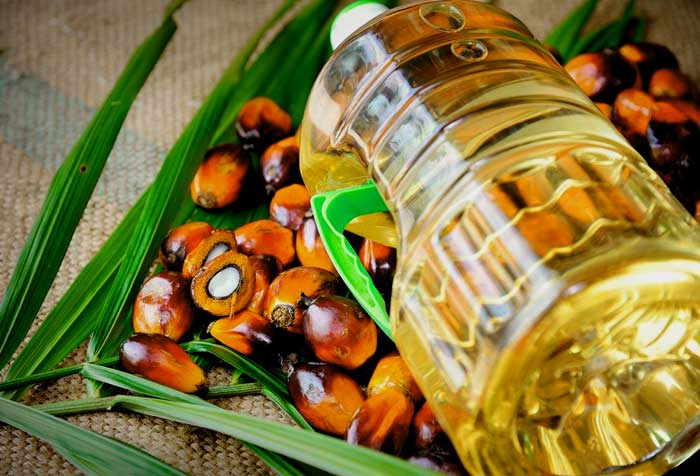 edible oil import of pakistan