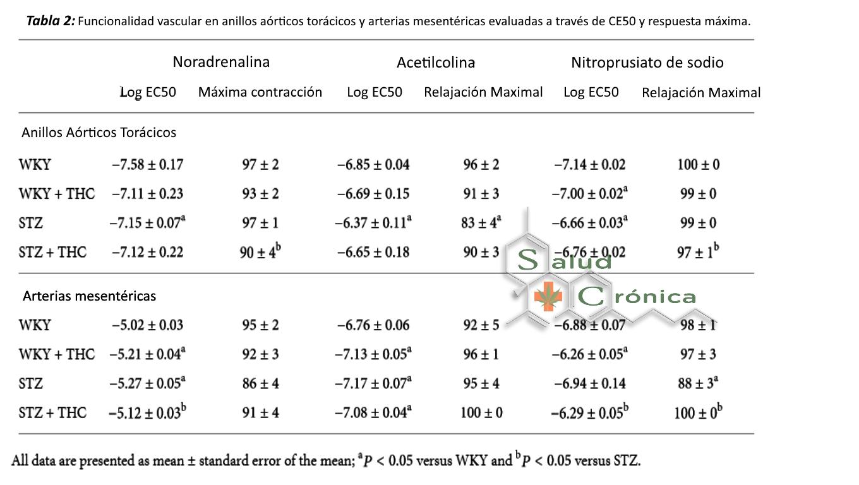 diabetes inducida por estreptozotocina en el tamaño de ratas wistar