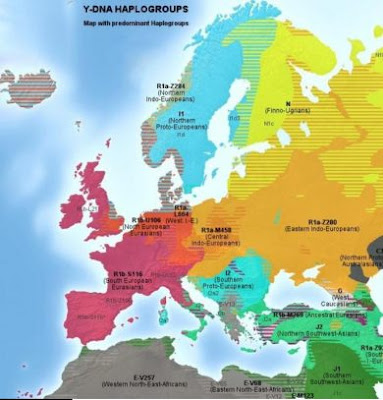 Y-DNA haplogroups