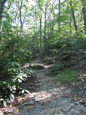 A rocky section of Kelly's Run Trail