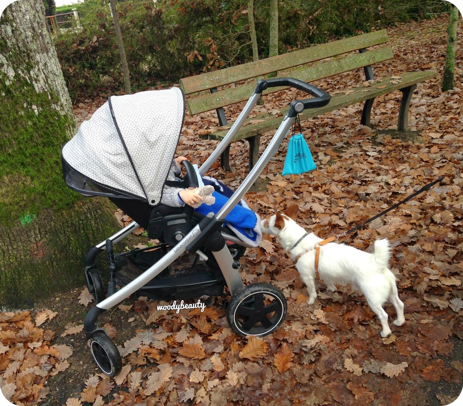 chien rencontre bébé pour la première fois