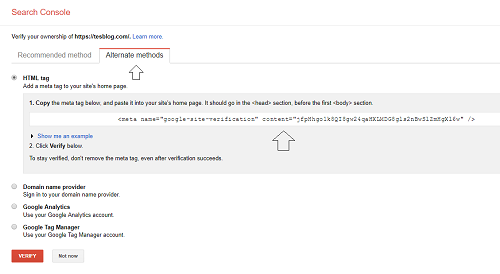 alternate methods search console