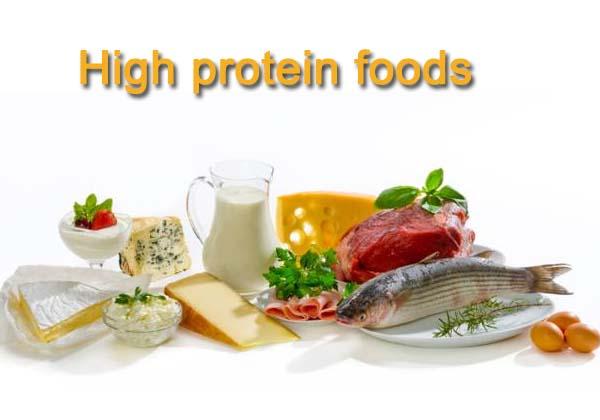 12 Best High Protein Foods