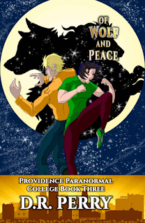 Providence Paranormal College, D.R. Perry, Up Next, On My Kindle Book Reviews, Marvelous Monday