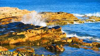 美國東岸–Acadia National Park 阿卡迪亞國家公園 (Part 3): Mount Desert Island (下)