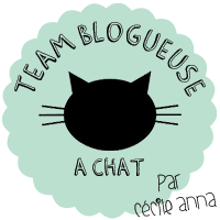 Blogueuse à chat
