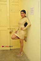 Actress Pooja Roshan Stills in Golden Short Dress at Box Movie Audio Launch  0021.JPG