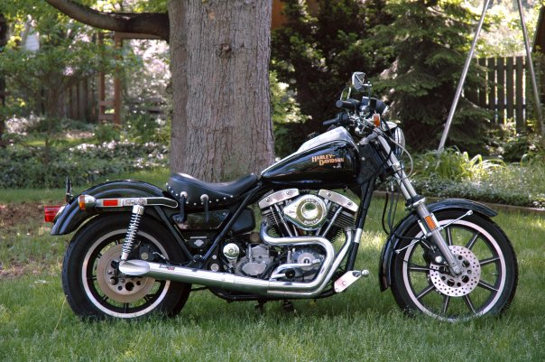 The Laughing Dog: Harley Davidson FXR