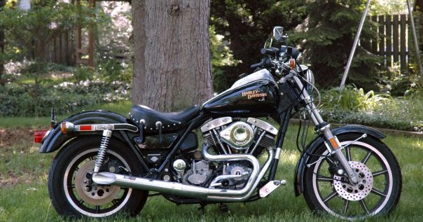 The Laughing Dog: Harley Davidson FXR on