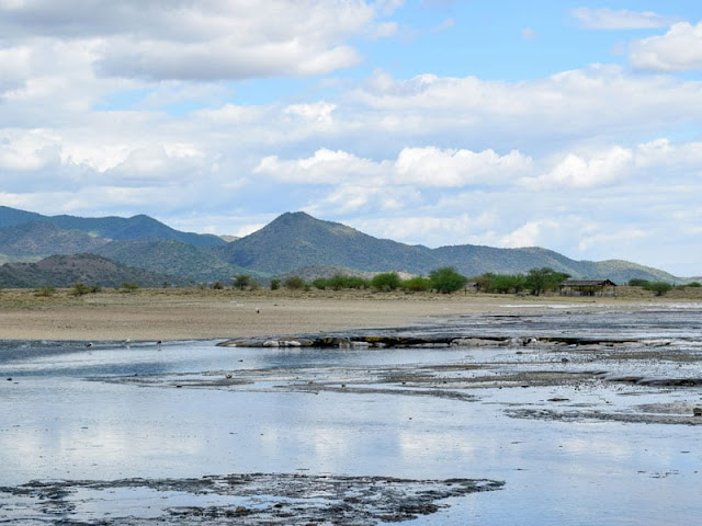 Dry conditions in East Africa half a million years ago possibly shaped human evolution, study finds