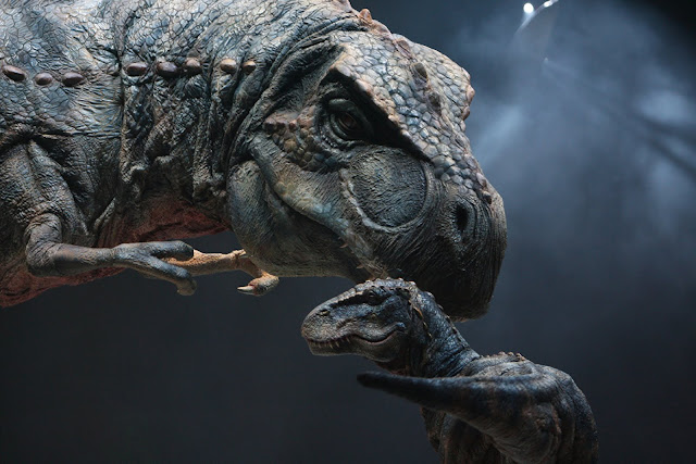 Researchers investigate 'baby' tyrannosaur fossil unearthed in Montana