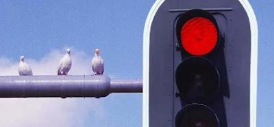 Stoplicht rood