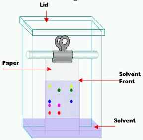 Metode Kromatografi Lapis Tipis (KLT)