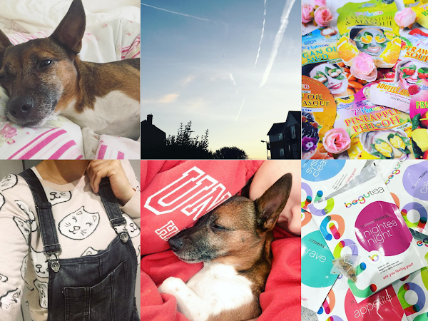Life Through Instagram | October
