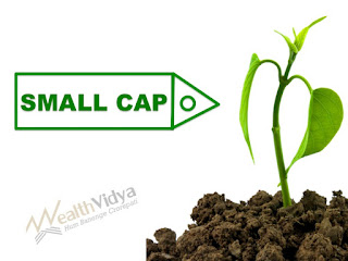 Small Tree and Small Cap Tag