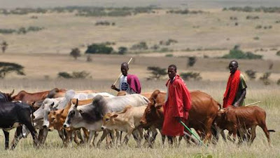 Woman Abducted By Suspected Herdsmen, 7 Killed