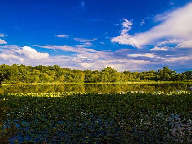Indiana Cub Lake, Merry Lea Environmental Center