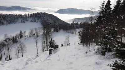 Schneelandschaft zwischen Zentner und Grossrieden