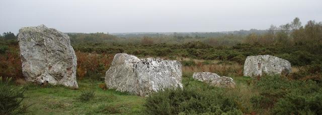 File ouest des Alignements de Cojoux, à Saint-Just