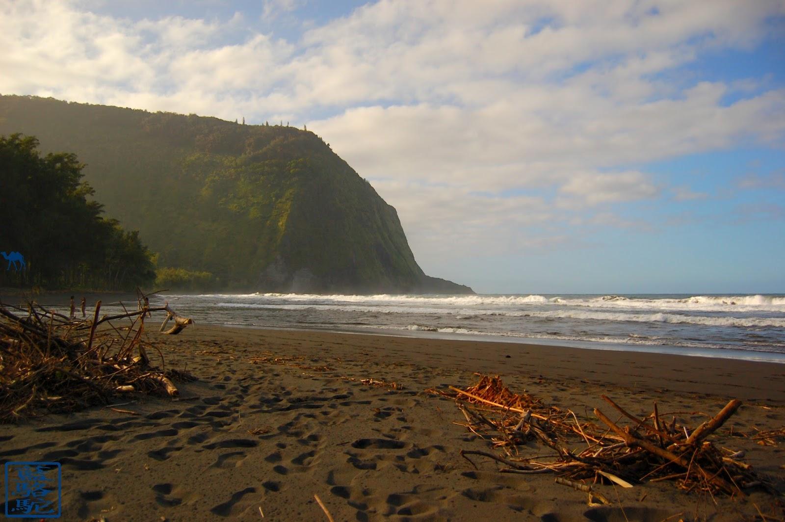 Le Chameau Bleu - Blog Voyage Hawaii -Instantanés Hawaïens - Plage de sable noir