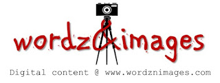 wordznimages logo