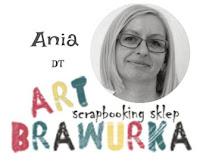 ArtBrawurka- baner