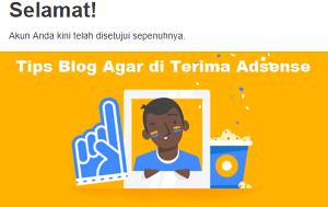 inilah Tips blog agr diterima oleh google adsense