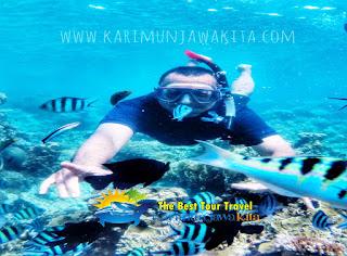 snorkeling di karimunjawa liburan juli