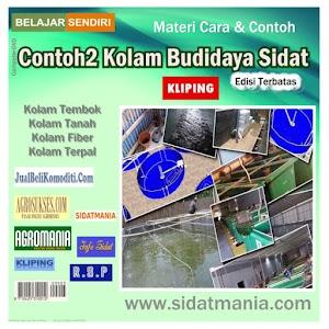 Contoh2 Kolam Budidaya Sidat (DVD) (Kode: KB)