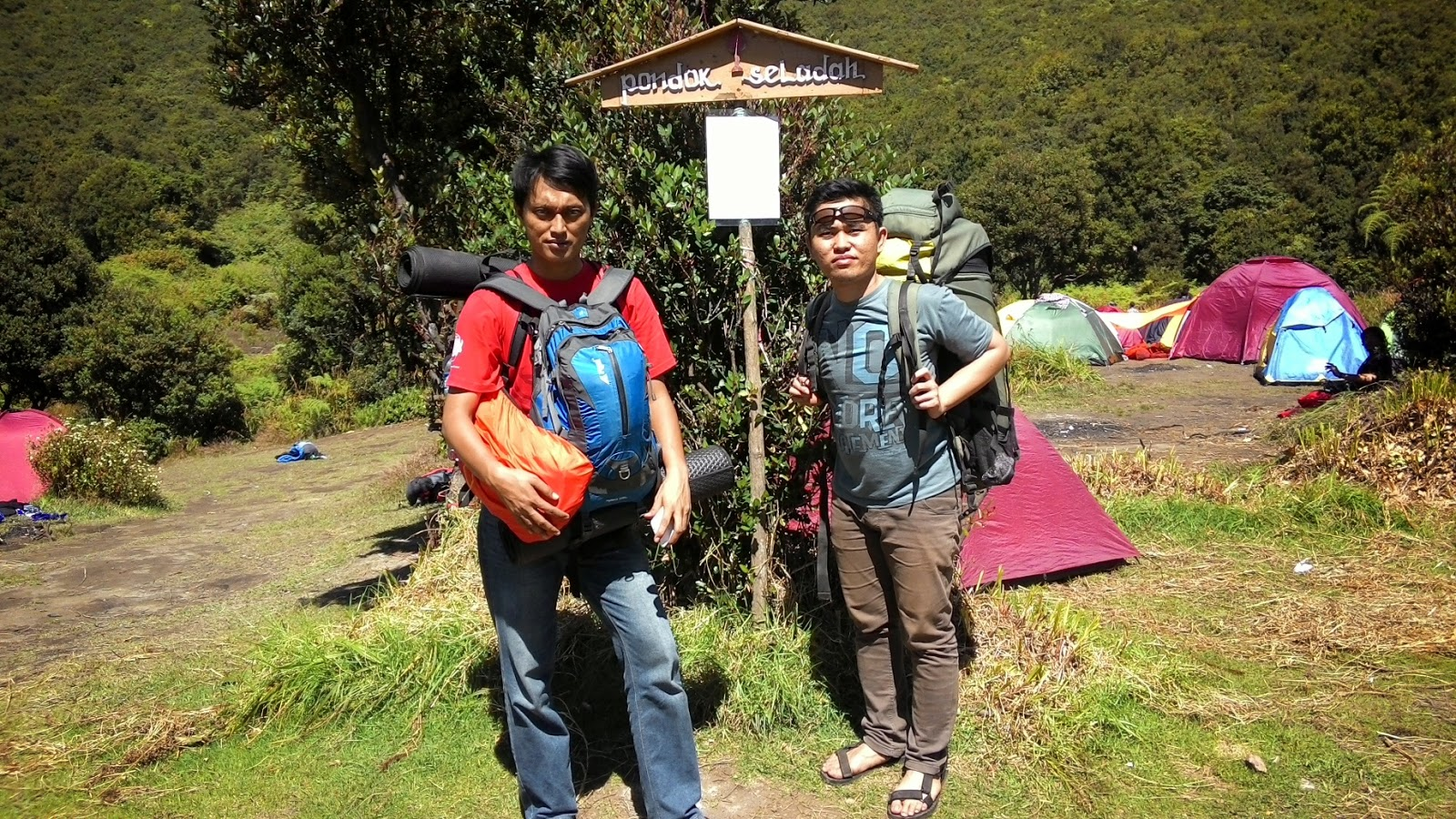 Indonesia Tourism Mountain Papandayan