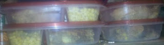 frugal blog, frugal living, tips, homemade TV dinners, ideas for sack lunches, ways to save money, DIY, pioneer recipes,