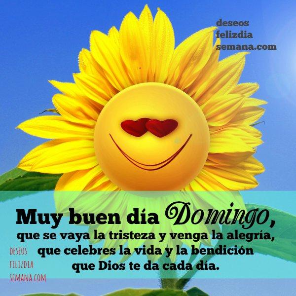 frases bonitas de feliz domingo imagenes mery bracho buenos deseos domingo